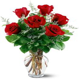 Morristown Florist | Six Red Roses