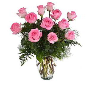 Morristown Florist | 12 Pink Roses