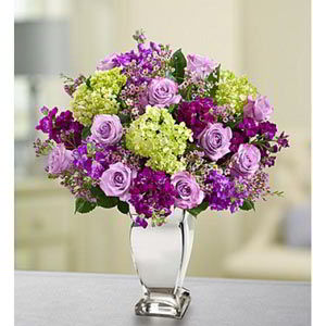 Morristown Florist | Lavender Collection