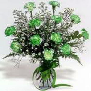 Morristown Florist | Dz Green Carnations