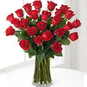 Morristown Florist | 24 Red Roses