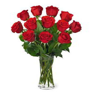Morristown Florist | Dz Red Roses